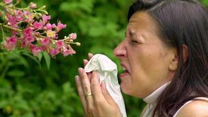 DAS sollten Sie über Allergien wissen