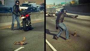 Dieser Biker hat ein Herz für Enten!