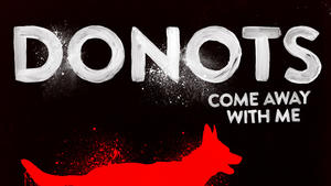 Donots - Single und Album im April