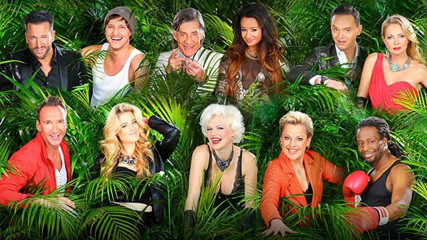 Jungle Camp Sendung Verpasst
